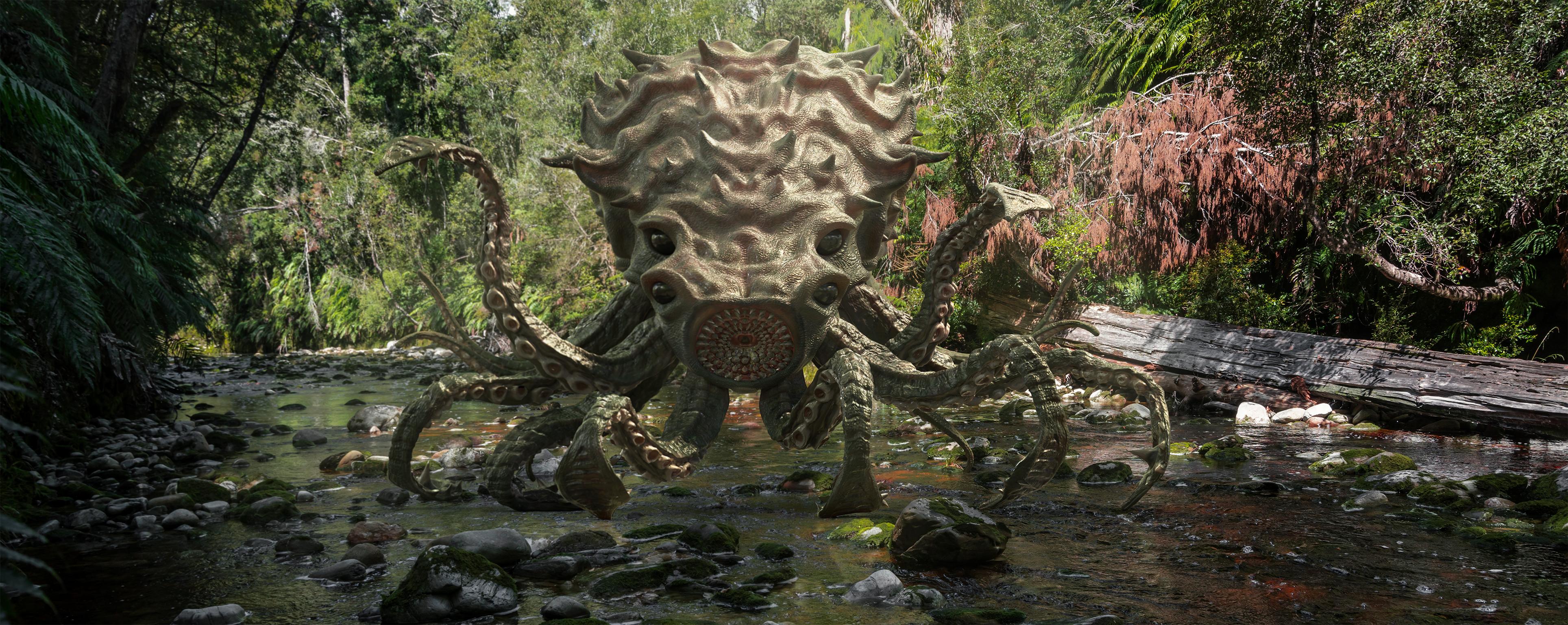 Rain Forest Land Concept